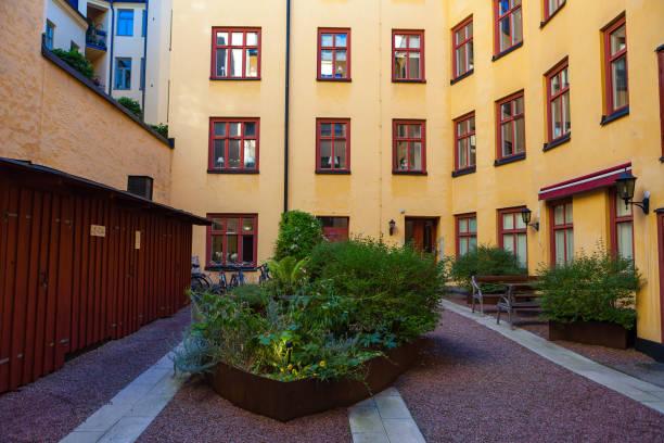 Green bush in yard of livilng block. Stockholm, Sweden. stock photo