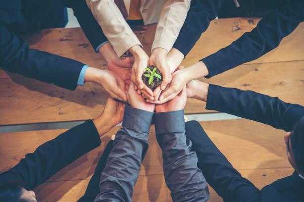 green business meeting. united partners team mit händen zusammen halten pflanze grün vertrauenswürdigen freunden. hände gestapelt holding mit nachhaltigkeitspartnern. vertrauen sie das geschäft authentisch von menschen. - trust stock-fotos und bilder