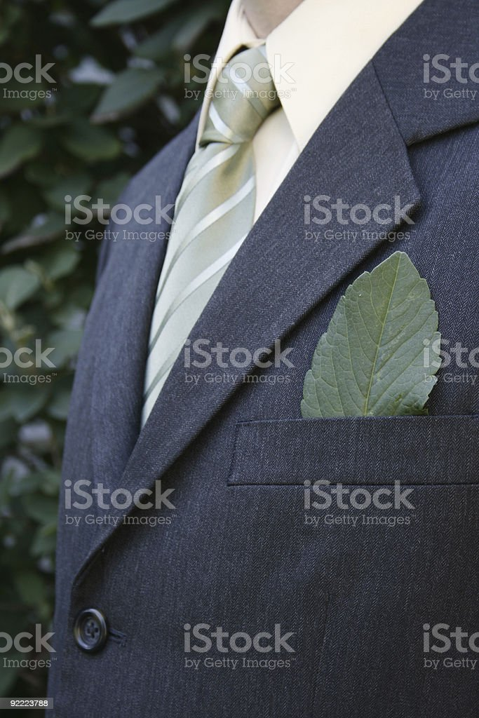Green businessman, and see others below!!!!!!! royalty-free stock photo