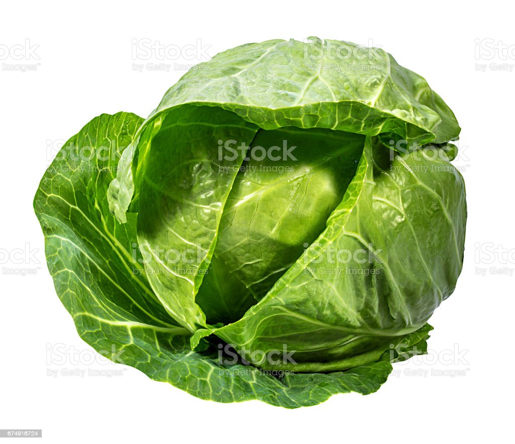 Green cabbage isolated on white royalty-free stock photo