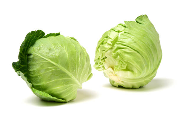 Green cabbage  on a white background - foto stock