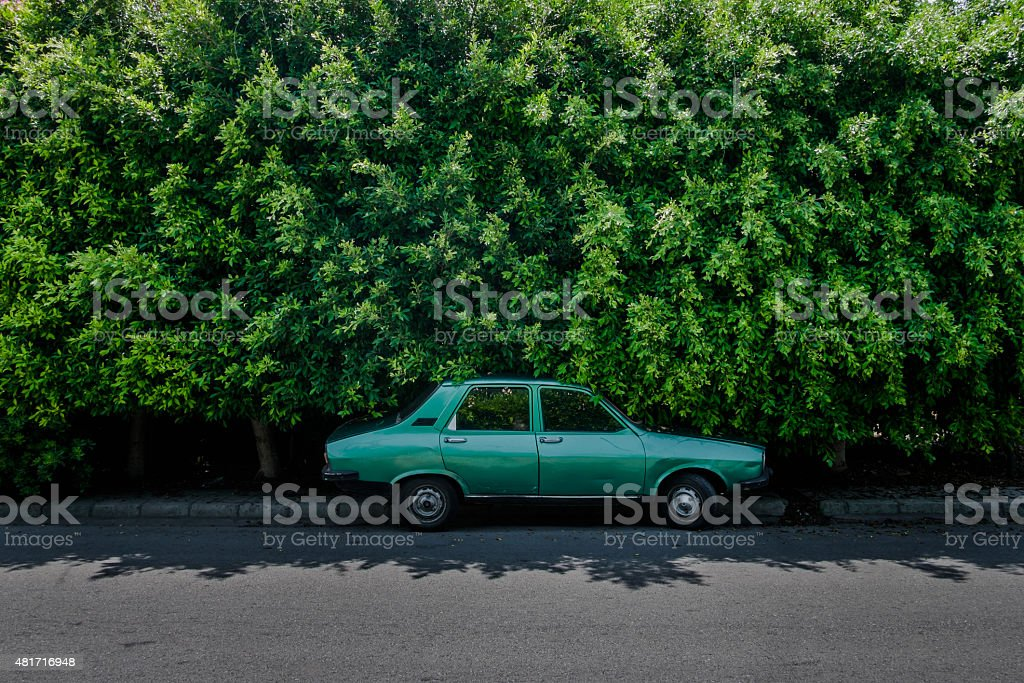 Green car in front of green hedge stock photo