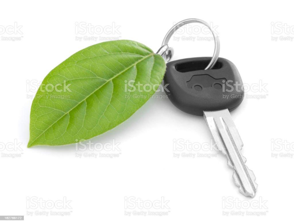 Green Car Key royalty-free stock photo