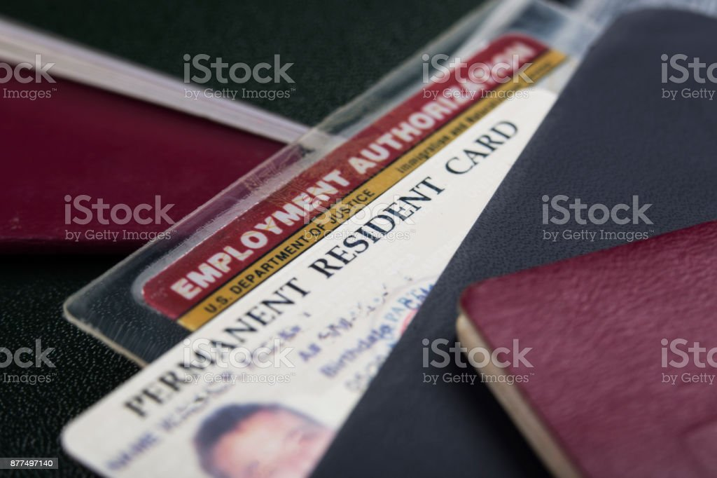 USA Green Card or permanent resident card and employment authorization card USA Green Card or permanent resident card and employment authorization card Alien Stock Photo