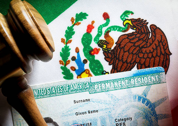 Green Card Mexican flag, gavel and green card. Immigration concept. green card stock pictures, royalty-free photos & images