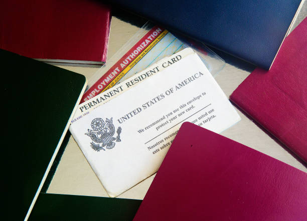 USA Green Card with passports USA Green card with passports and employment authorizaton card. naturalization green card stock pictures, royalty-free photos & images