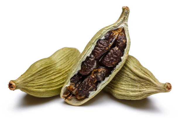 Green cardamom pods and seeds on white background Green cardamom pods and seeds isolated on white background cardamom stock pictures, royalty-free photos & images