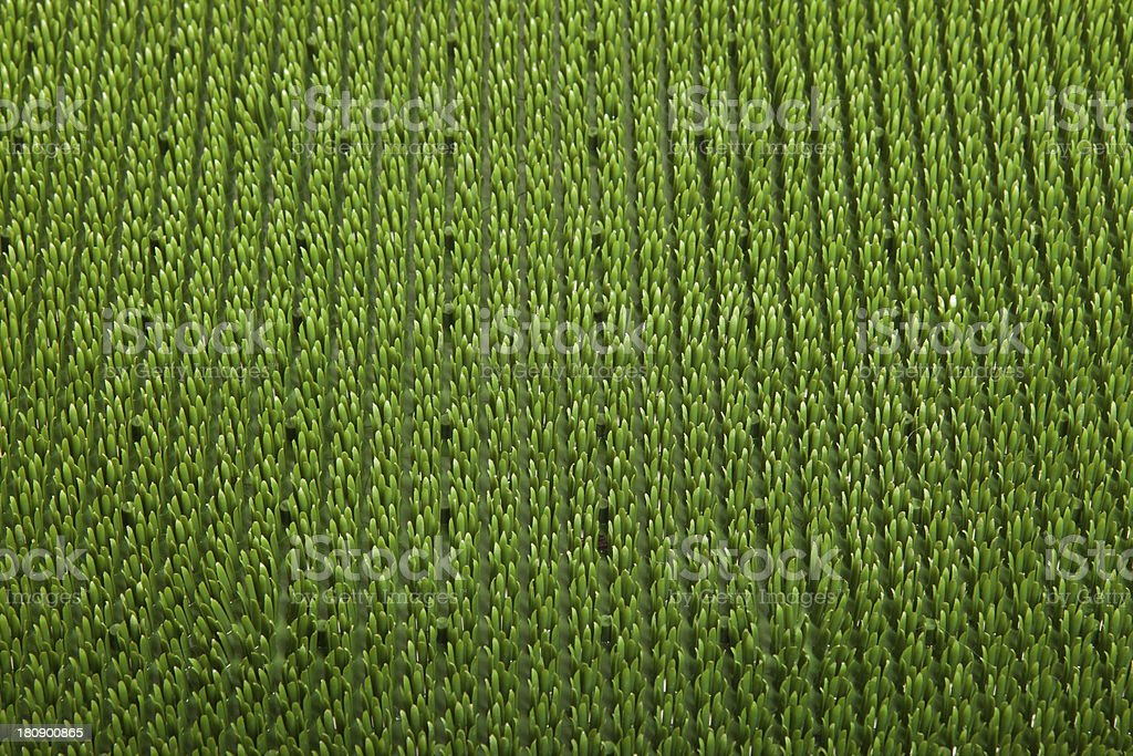 green carpet close up royalty-free stock photo