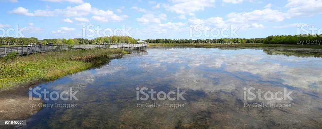 Green Cay Preserve Wetlands stock photo