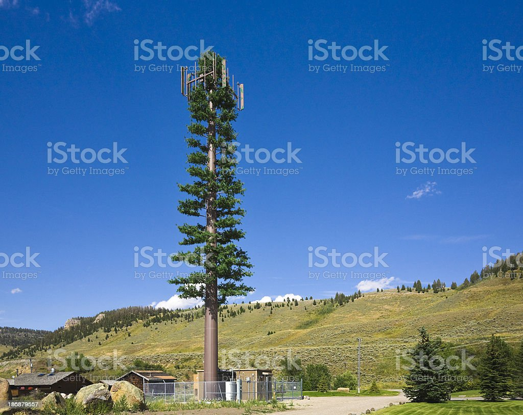 Green Cellular Phone Tower that looks like a pine tree stock photo