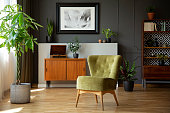 Green chair next to plant in grey living room interior with poster above wooden cabinet. Real photo