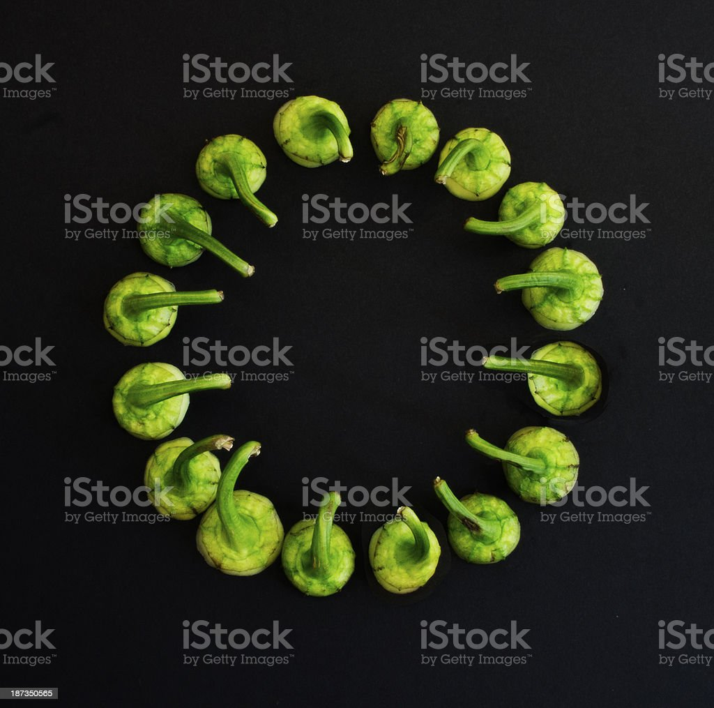 Green chili peppers circle royalty-free stock photo