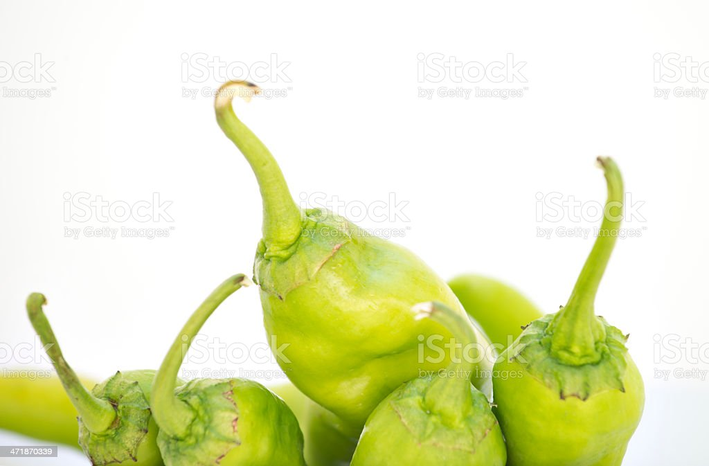 Green chili peppers royalty-free stock photo
