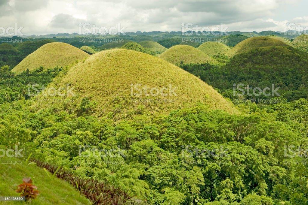 Green Chocolate Hills of Bohol royalty-free stock photo