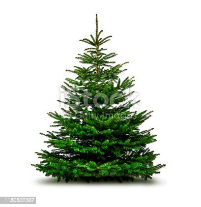istock Green Christmas tree isolated on white background 1180802367