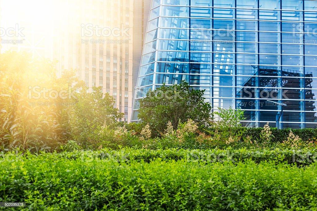 green city park stock photo
