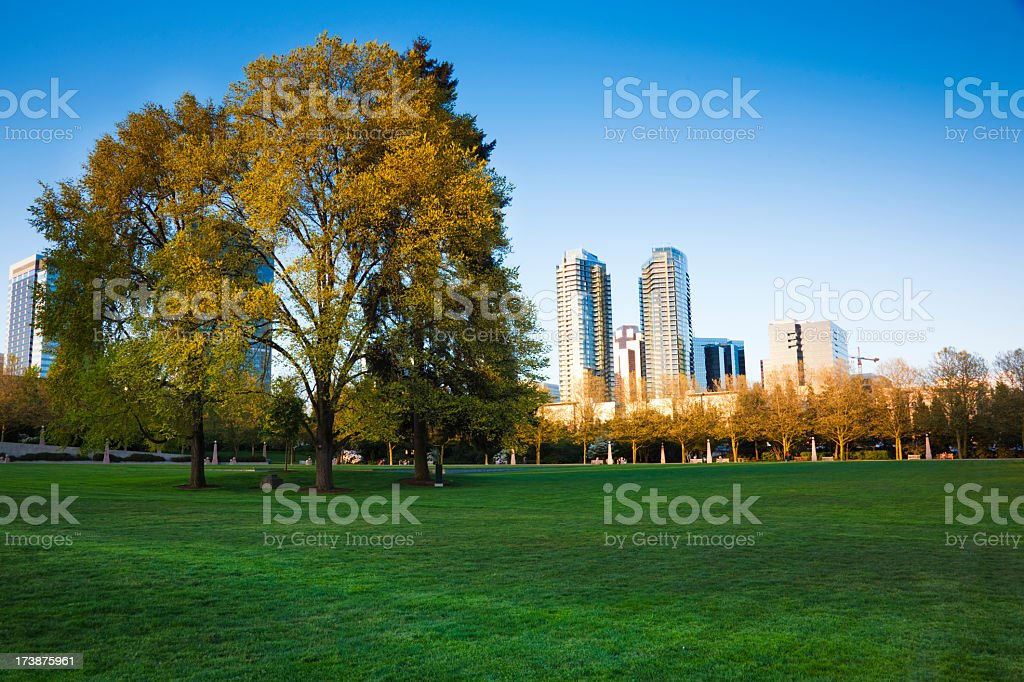 A green city park with the skyline in the background stock photo
