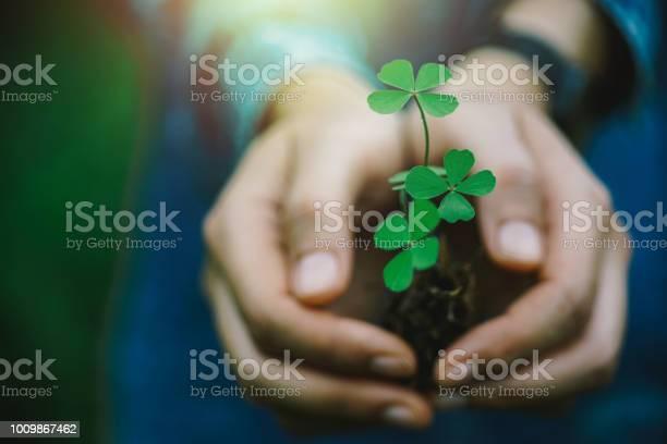 Green clover leaf in hand picture id1009867462?b=1&k=6&m=1009867462&s=612x612&h=vr1ksfyj6sgbsovedb0gadhbggnfn03qym5vpp02xba=