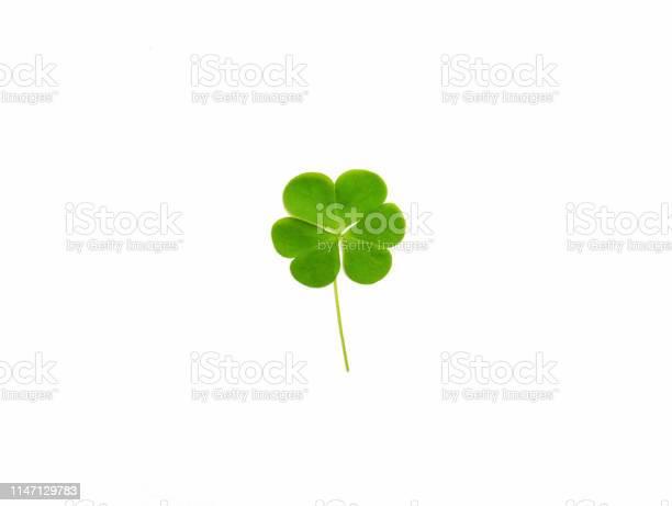 Green clover leaf isolated on white background saint patricks day picture id1147129783?b=1&k=6&m=1147129783&s=612x612&h=mgsknb3 kiliz9ujjwajpzcrwib0gpky60wmnk8mc7w=