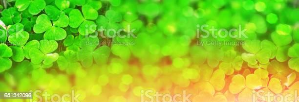 Green clover leaves picture id651342096?b=1&k=6&m=651342096&s=612x612&h=lip566altqypvdayyx49eijgiuuuksbyajb9clsrwti=
