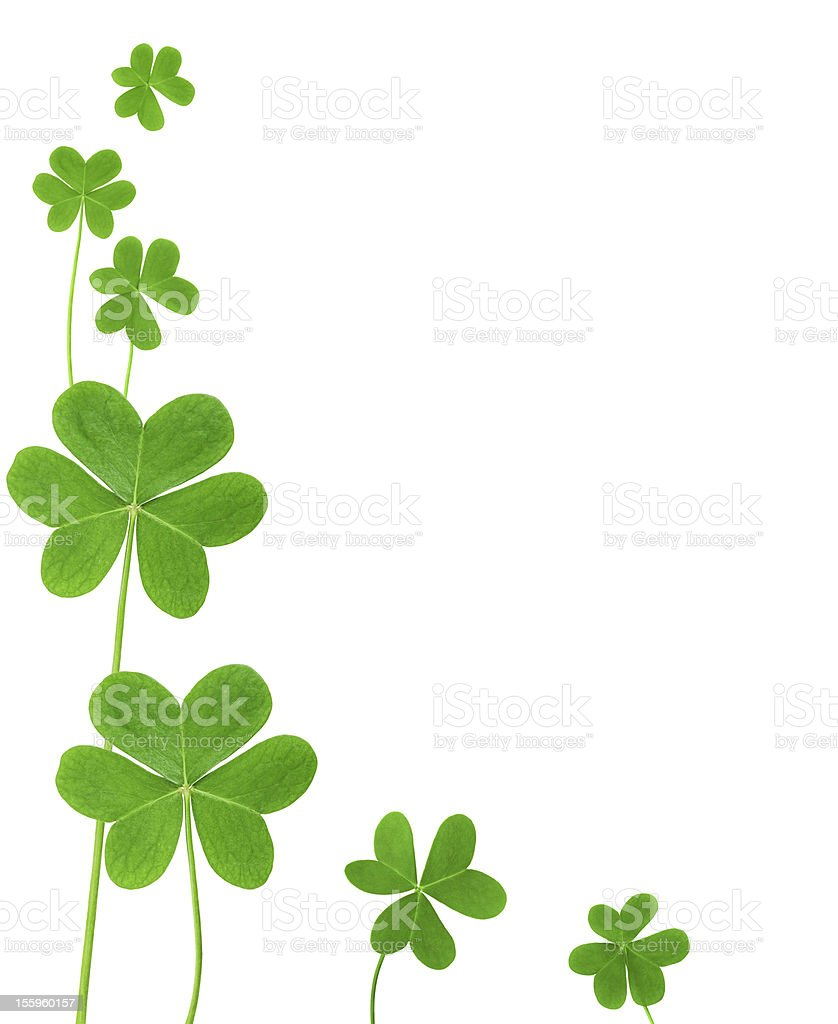 royalty free shamrock border pictures images and stock photos istock rh istockphoto com