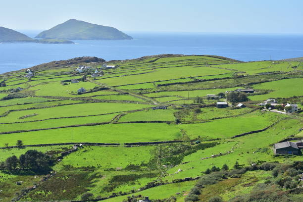 green coast of ireland - county clare stock pictures, royalty-free photos & images