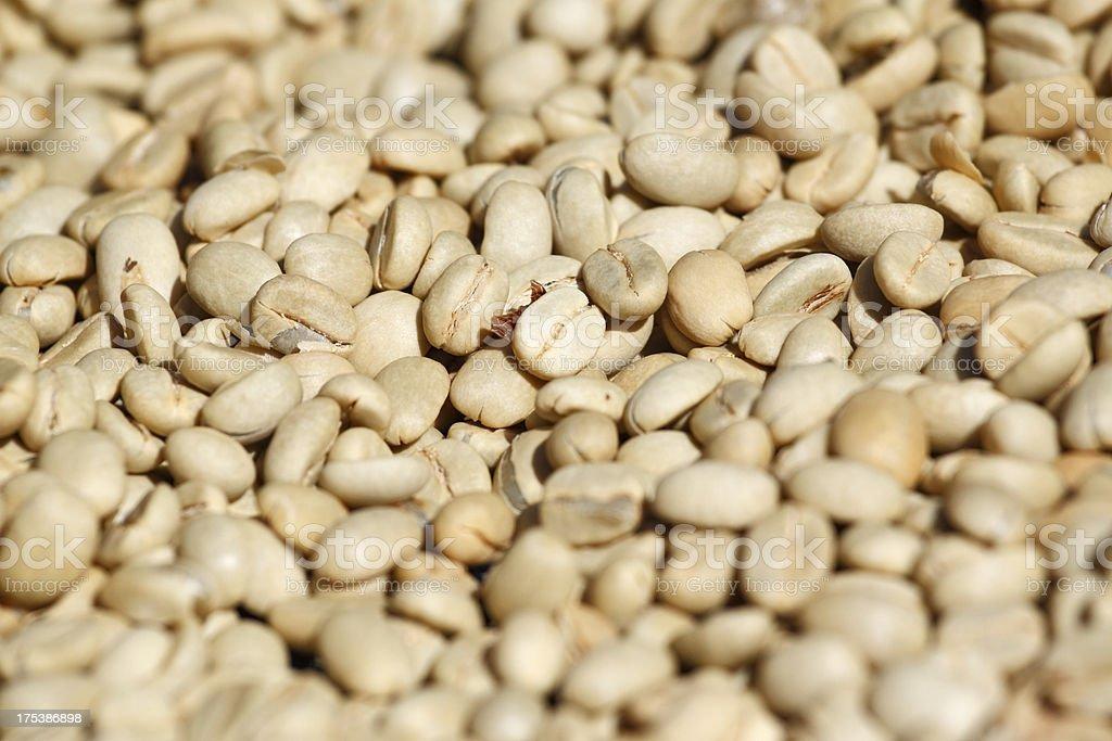 Green coffee bean royalty-free stock photo
