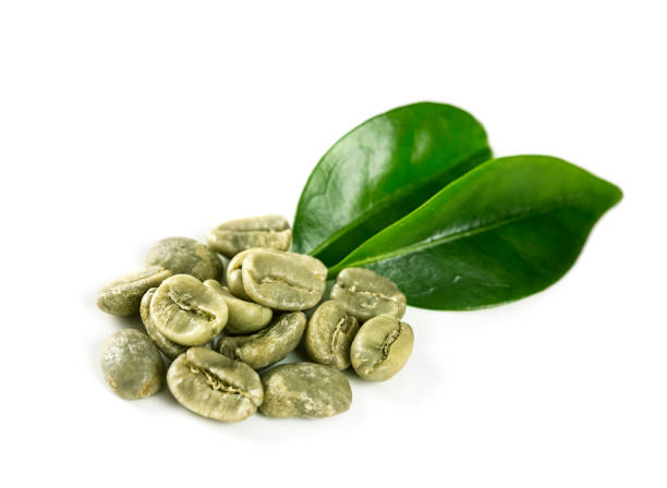 Grüner Kaffeebohnen Bohnen  – Foto