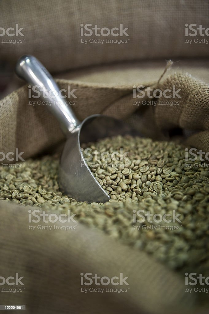 Green Coffee Beans Vertical royalty-free stock photo