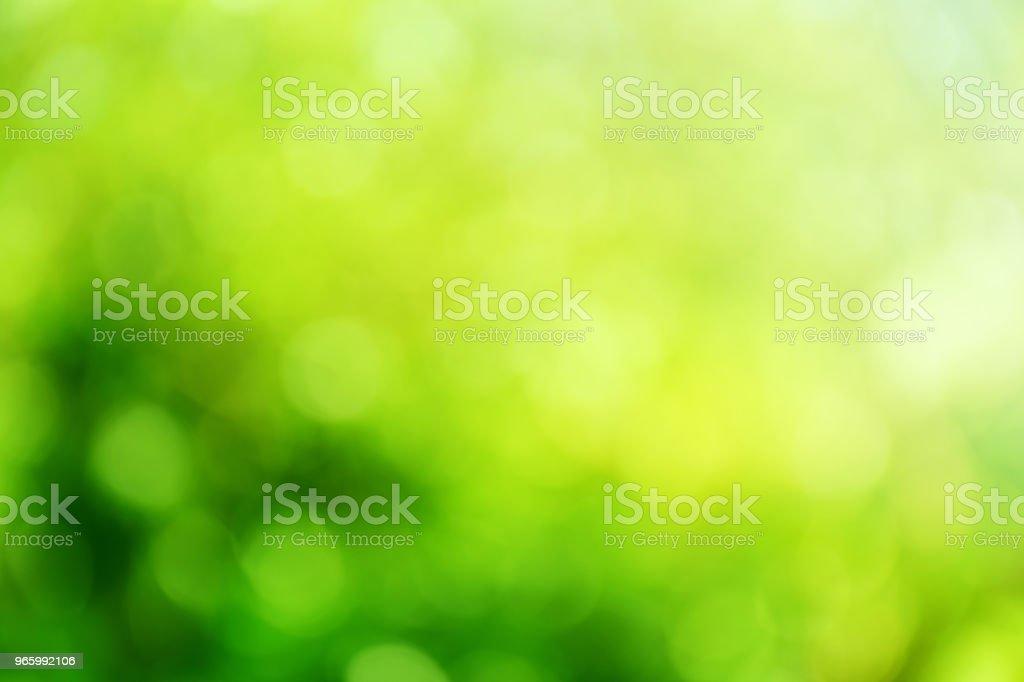groene kleur abstracte achtergrond met wazig defocus bokeh licht voor sjabloon - Royalty-free Abstract Stockfoto