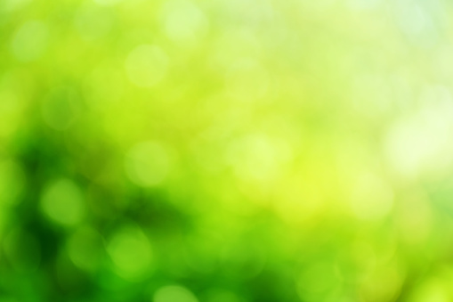 Groene Kleur Abstracte Achtergrond Met Wazig Defocus Bokeh Licht Voor Sjabloon Stockfoto en meer beelden van Abstract