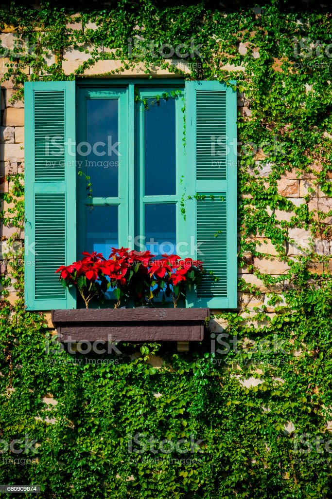 Green colorful wooden window royalty-free stock photo