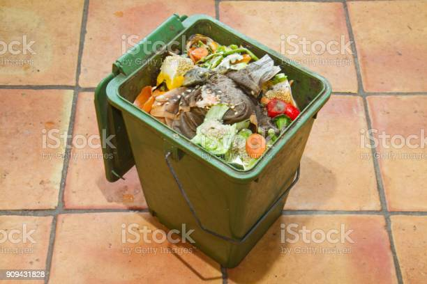 Green compost bucket picture id909431828?b=1&k=6&m=909431828&s=612x612&h=esouvc9epqgtvatyqlnglsphxihannbpn0suwtp0 nu=
