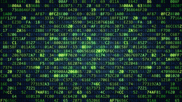 green computer code wallpaper simple - bit binary stock pictures, royalty-free photos & images