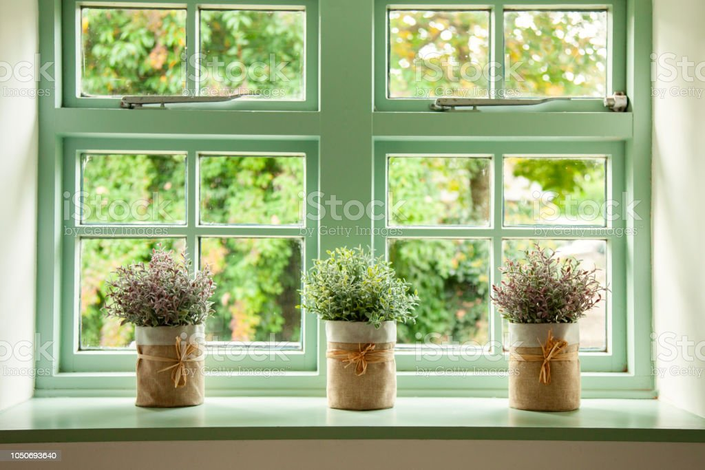 Green cottage window, with plants in pots in front stock photo