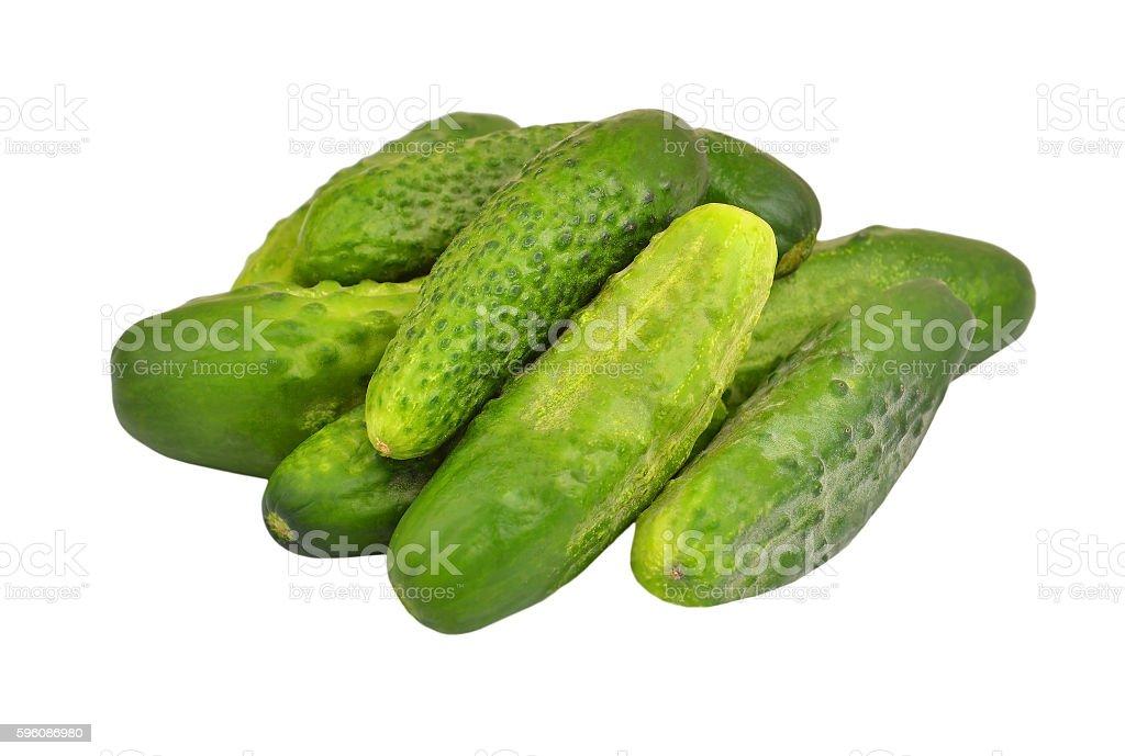 Green cucumber gherkin royalty-free stock photo