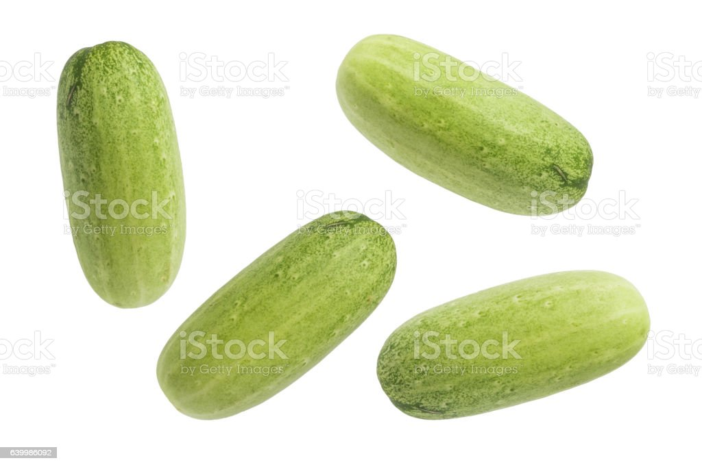 Green cucumber isolated background stock photo