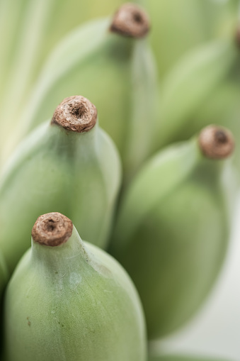 Green Cultivated Banana On White Stock Photo - Download Image Now