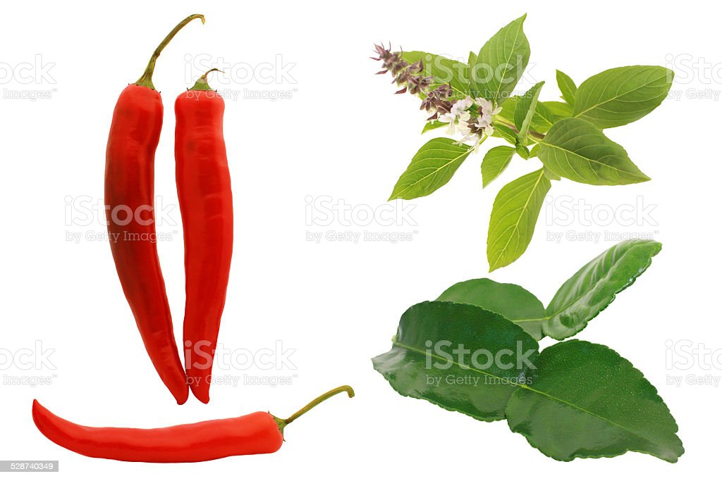 Green curry ingredients on white background. stock photo