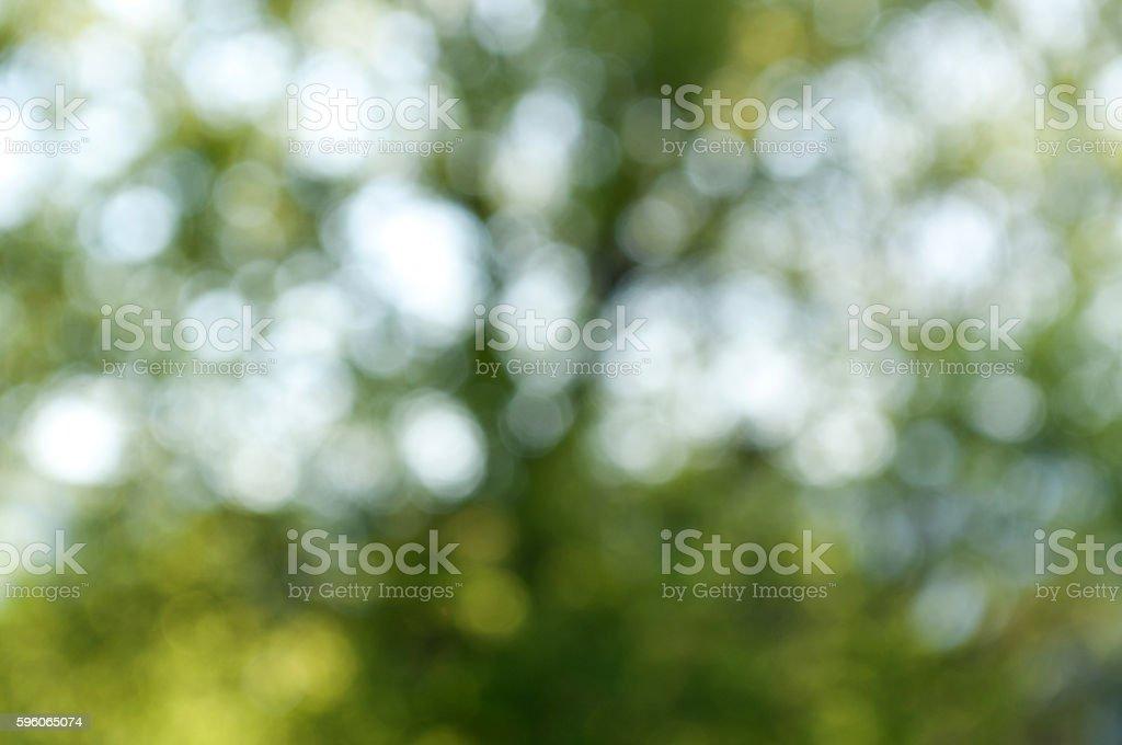 Green Defocus royalty-free stock photo