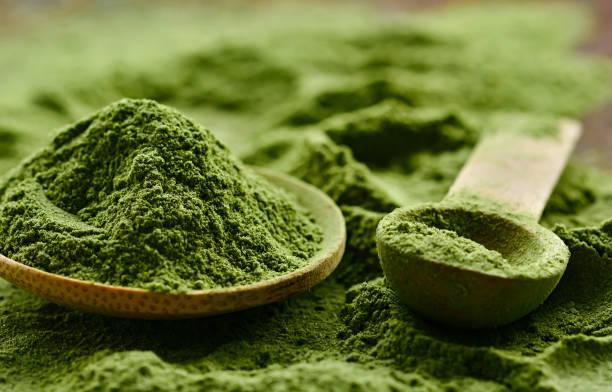 gröna detox pulver - spirulinabakterie bildbanksfoton och bilder