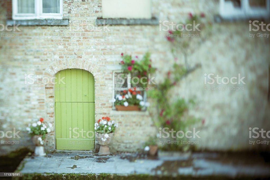 Green door and flowers stock photo