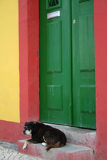 Green Door – Foto
