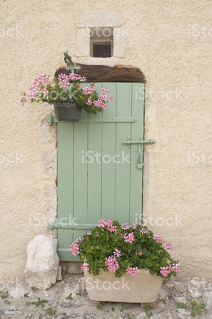 Green door. royalty-free stock photo