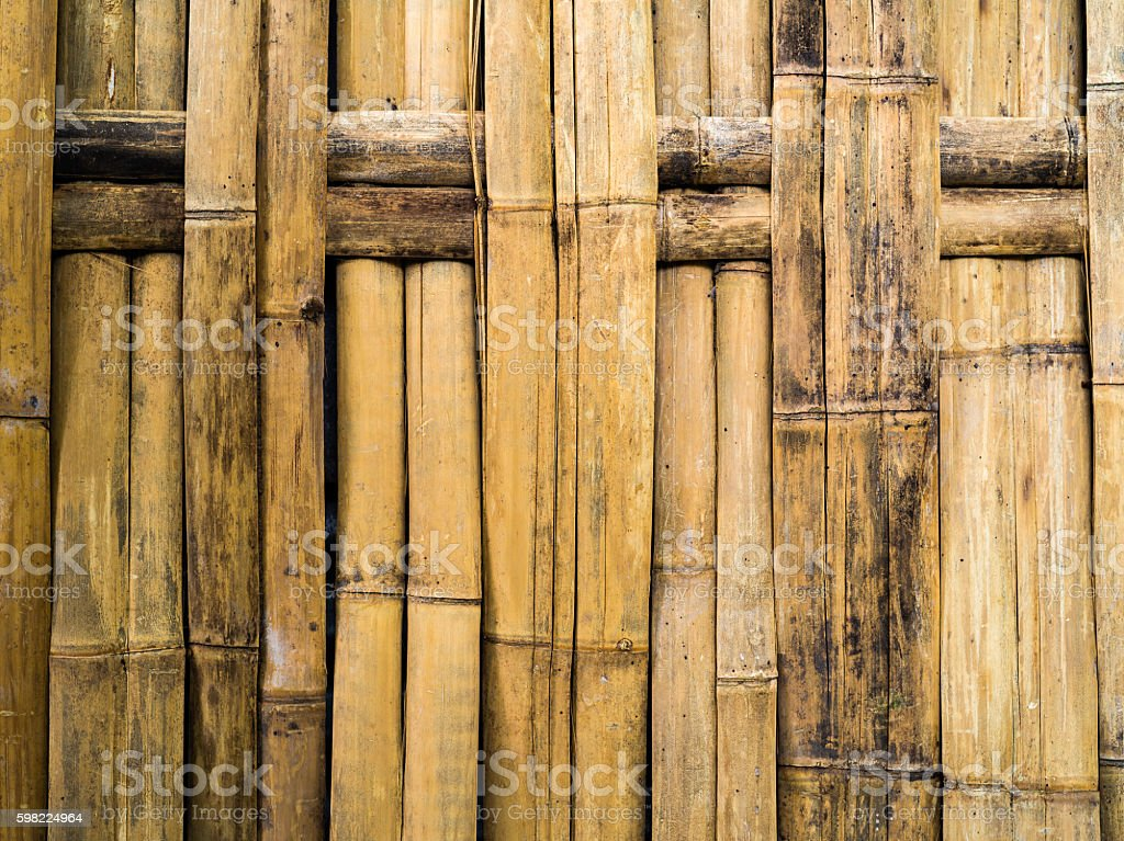 Green dry bamboo weave for stucture wall foto royalty-free