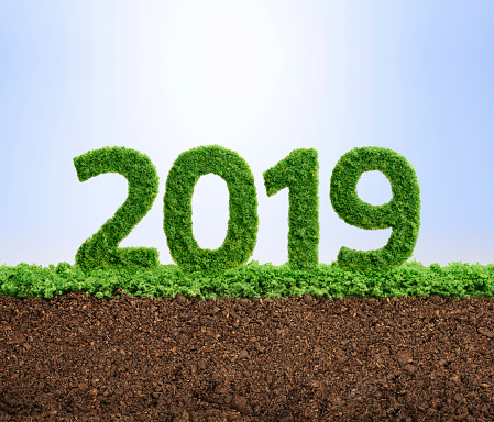 istock 2019 green ecology year concept 963173170
