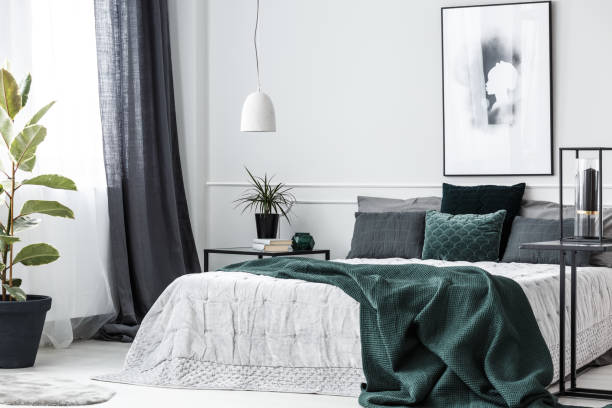Green elegant bedroom interior Green blanket on bed in elegant bedroom interior with poster on white wall and plant on table bedroom stock pictures, royalty-free photos & images