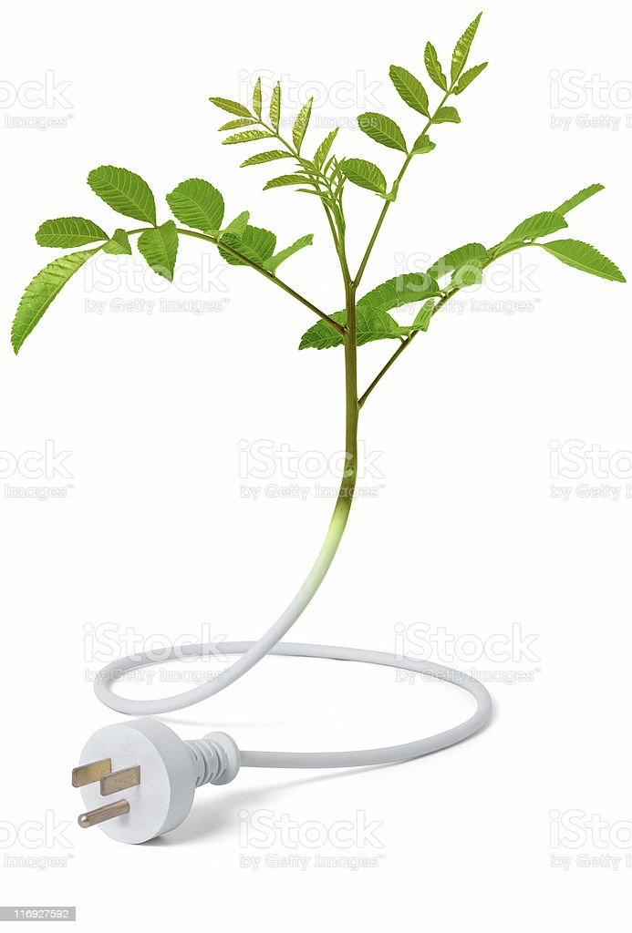Green Energy - American Plug royalty-free stock photo