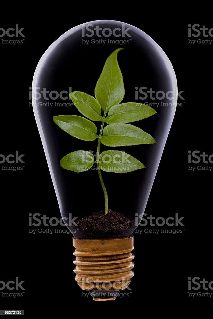 Green energy concept, royalty-free stock photo