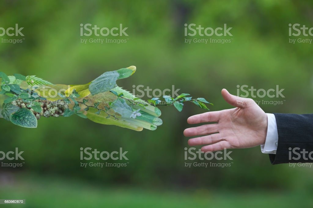 Green energy - foto de stock
